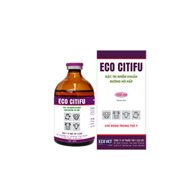Eco Citifu