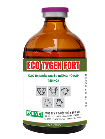 Eco Tygen Fort